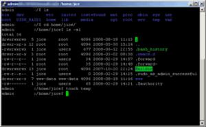 Commandes Linux de base